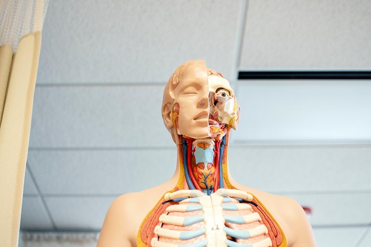 a fogyás okozhat-e fülzúgást